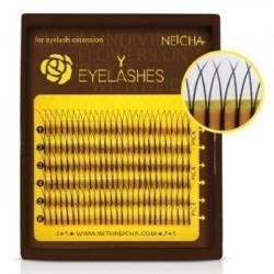 Eyelash Extensions Y Mini
